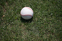 A baseball sits on a field of grass, in sunlight, on a baseball diamond, before batting practice.