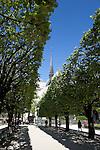 Spring in Notre Dame Park, Ile de la Cite, Paris, France, Europe