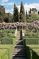 The lemon garden at La Foce