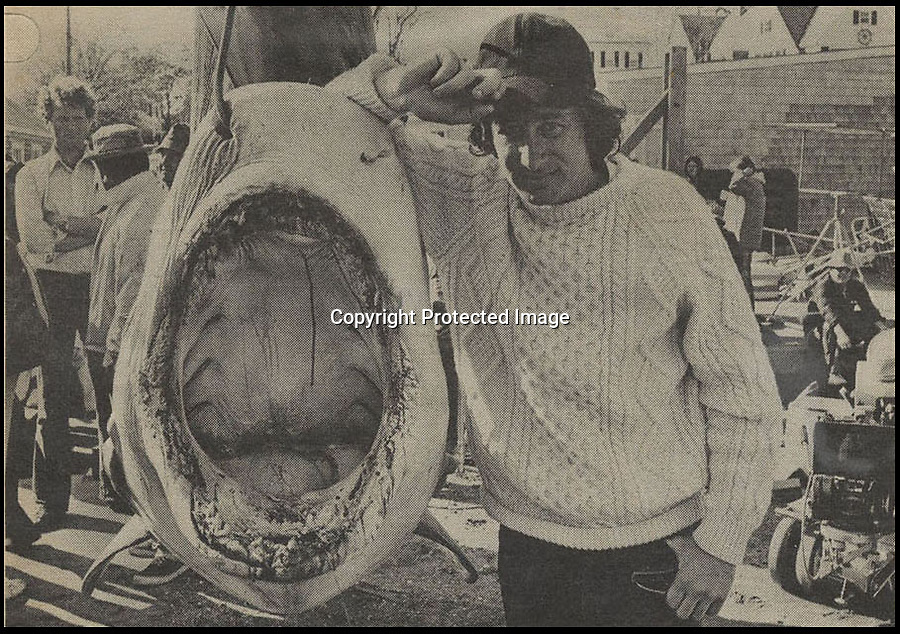 BNPS.co.uk (01202 558833)<br /> Pic: NateDSaunders/BNPS<br /> <br /> ***Please use full byline***<br /> <br /> Archival picture of Spielberg with a real tiger shark.<br /> <br /> Rare behind-the-scenes photographs taken on the set of the cult movie 'Jaws' has surfaced after 40 years.<br /> <br /> The 75 pictures include ones of star Roy Scheider, who played shark-hunting police chief Brody in the classic 1975 film, and director Steven Spielberg.<br /> <br /> There are several snaps of the giant mechanical rubber shark that wreaked terror on the fictional seaside resort of Amity.<br /> <br /> It is depicted being hoisted in the air and moved into position as well as sat in a dry dock during a break in the filming.