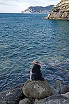 A young woman sits alone on rocks at the edge of the sea, gazing out to the horizon