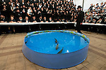 Ultra-Orthodox Jews and a plastic pool filled with water and live fish, during a 'Tashlich' ritual, in the ultra-orthodox Jewish city of Bnei Brak, near Tel Aviv, Israel. 'Tashlich' ('to cast away') is a practice by which Jews go to a flowing body of water and symbolically 'throw away' their sins, before the Day of Atonement ('Yom Kippur'), the holiest day in the Jewish calendar.