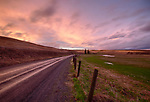 Idaho, North Central, Latah County, Palouse, Moscow. A country road under sunset skies on the Palouse in spring.