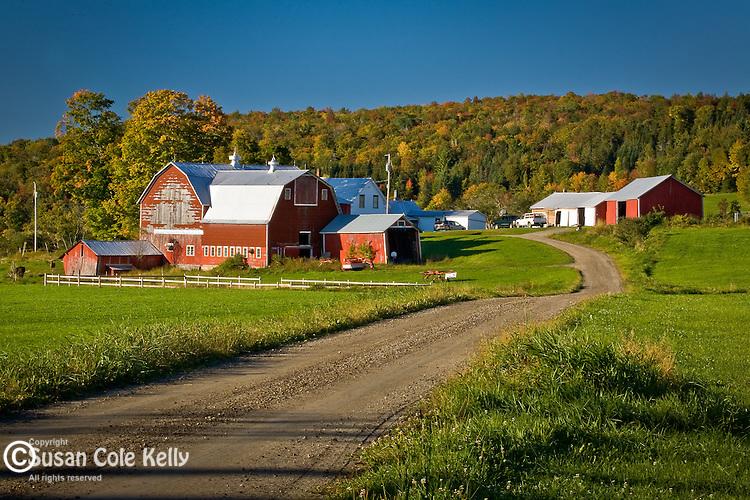 Fall foliage in Kirby, Northeast Kingdom, VT, USA