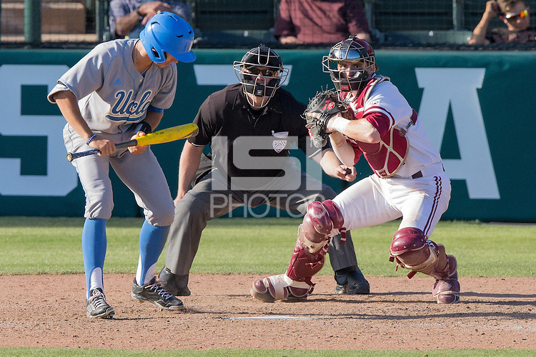 Stanford, CA -- April 26, 2015: Stanford Cardinal vs the UCLA Bruins on Klein Field at Sunken Diamond.  UCLA defeated Stanford 9-3.