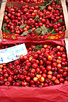 Fresh cherries, Palermo food market, Sicily