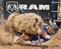 RAM Rodeo'14 Tweed