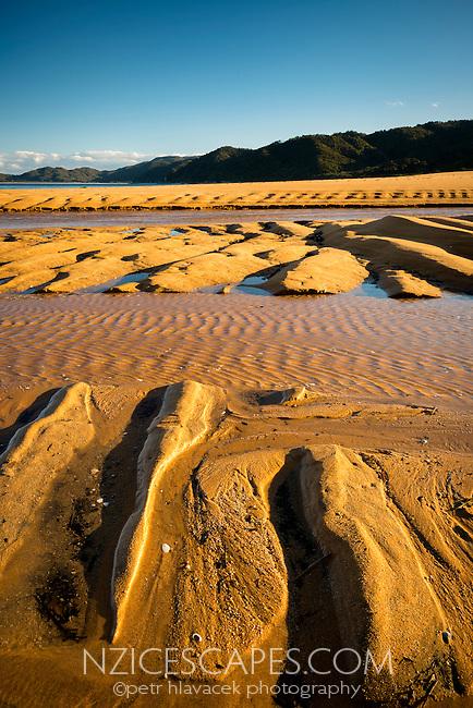 Sand patterns on golden beach in Totaranui at setting sun, Abel Tasman National Park, Nelson Region, New Zealand