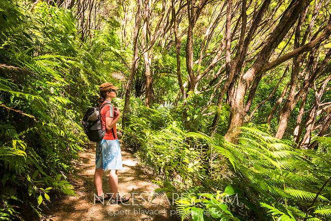 Young woman hiking on Abel Tasman Coast Track, Abel Tasman National Park, Nelson Region, South Island, New Zealand