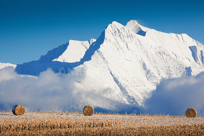 Snow covered Mission Mountains and round hay bales in western Montana