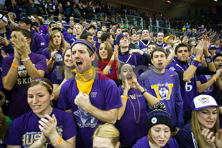 Dawg Pack, Husky fans..---Washington Huskies men's basketball against the California Golden Bears at Alaska Airlines Arena at Hec Edmundson Pavilion in Seattle on Thursday, January 19, 2012. (Photo by Dan DeLong/Red Box Pictures)