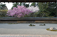 A view of the carefully raked gravel of the Ryoan-Ji Temple from the long veranda whence visitors view the garden