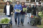 Foto: VidiPhoto<br /> <br /> LEIDEN &ndash; Cli&euml;nten en begeleiders van bollenasiel Hoeve Cronesteijn in Leiden voeren woensdag een nieuwe lading dakloze bloembollen aan. Het loopt storm momenteel. Grote aantallen uitgebloeide blauwe druifjes, narcissen en hyacinten worden door de inwoners van Leiden en omgeving afgeleverd bij de dagbesteding van de Gemiva-SVG Groep, waar mensen met een verstandelijke beperking en gedragsstoornis werken. De afgedankte lentebloeiers krijgen daar een tweede leven. De cli&euml;nten verwijderen de verdorde bloemen en plaatsen ze in bakken. Komend najaar worden de bollen geplant in Leiden en omgeving, waarmee een bijdrage aan de biodiversiteit in de stad wordt geleverd. Het bollenasiel, uniek in Nederland, is zo&rsquo;n groot succes dat er zelfs extra inzamelpunten in Leiderdorp en Zoetermeer zijn geopend.