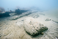 A partially buried wooden barrel on the ocean floor in Panama.