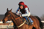 Race winner The Polomoche ridden by in action during the PointToPoint.co.uk Hunters Chase - Horse Racing at Huntingdon Racecourse, Cambridgeshire - 23/02/12- MANDATORY CREDIT: Gavin Ellis/TGSPHOTO - Self billing applies where appropriate - 0845 094 6026 - contact@tgsphoto.co.uk - NO UNPAID USE.