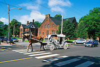 Charlottetown, PEI, Prince Edward Island, Canada - Horse Carriage Tour in the City