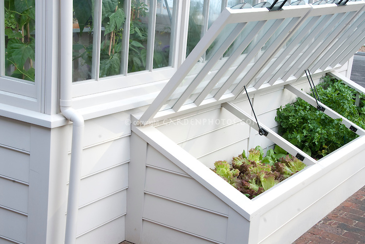 Cold Frame Vegetable Garden 013846jpg Plant Flower Stock