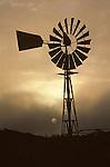 Farmland with silhouetted weather vane at sunrise Snohomish County Washington State USA