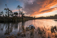 Sunset over Gillespies Lagoon with native forest,, Westland Tai Poutini National Park, West Coast, World Heritage Area, New Zealand