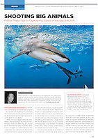 Sport Diver Magazine, January / February 2012, &quot;Shooting Big Animals&quot; feature, editorial use, USA, Image ID: