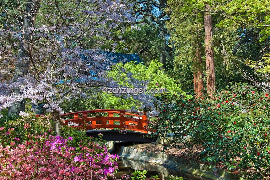 Descanso Gardens, La Canada, Flintridge, California, Japanese Tea Garden, Bridge,