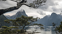 Morning cloudy skies over Milford Sound and Mitre Peak, Fiordland National Park, Southland, World Heritage Area, New Zealand