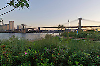 Brooklyn Bridge Park, Brooklyn, New York City, New York, USA