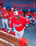 28 February 2017: Washington Nationals Manager Dusty Baker looks out from the dugout prior to the inaugural Spring Training game between the Washington Nationals and the Houston Astros at the Ballpark of the Palm Beaches in West Palm Beach, Florida. The Nationals defeated the Astros 4-3 in Grapefruit League play. Mandatory Credit: Ed Wolfstein Photo *** RAW (NEF) Image File Available ***