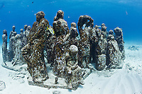 RG40529-D. underwater sculpture garden called The Silent Evolution, made by artist Jason de Caires Taylor. Part of the Museo Subacuatico de Arte, these cement sculptures rest in 25 feet of water off Isla Mujeres and depict real people, including many locals from the Cancun area. Made using special materials which encourage colonization by coral and other invertebrate marine life, and also attract tropical fish species. One goal of this installation is to help form an artificial reef which will reduce tourist pressure on nearby natural reefs.  Mexico, Gulf of Mexico, Caribbean Sea.<br />