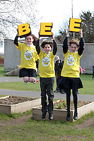 NO FEE PICTURES.8/3/12 Winner Edward Collins, St Mary's NS, Donnybrook, with Megan Smith, Mother of Devine , Ballygall (left) and Aoife Healy St Olaf's NS, Dundrum who where taking part in the Dublin County final, part of the overall Eason 2012 Spelling Bee, held at St Olaf's NS, Dundrum. .For further details visit www.easons.com/spellingbee and stay tuned to RTE 2fm. Picture:Arthur Carron/Collins
