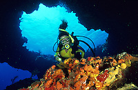 Diver at Eagle Shoals<br />