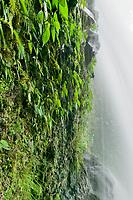Waterfall, Costa Rica, Central America.