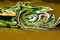 green vortex on brown water.Brown and green colors of the nature. Summer season. Fine art photography. Abstract picture, modern art. On black background sharp focus on a spiral shape in green and white colors. It seems moving to right. Green reflections. Dark and light green shades.  White and brown color  lines in the spiral.Abstract photography, fine art photography, modern art