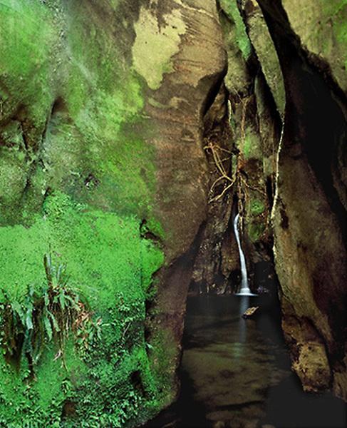 Wards Canyon,<br /> Carnarvon Gorge<br /> Qld