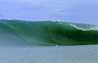 Huge Nias July 2006.