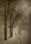 Silhouette of a person standing in the middle of a mysterious tree-lined road in winter