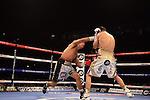 En el Manchester Arena, de Manchester, Inglaterra, el colombiano Darleys Pérez fue noqueado por el local Anthony Crolla, al quinto de 12 asaltos programados, perdiendo así su cinturón de las 135 libras de la Asociación Mundial de Boxeo (AMB).