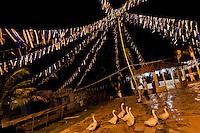 Geese walk at the ritual dance yard outside the temple (terreiro) in São João de Manguinhos, Bahia, Brazil, 9 February 2012.