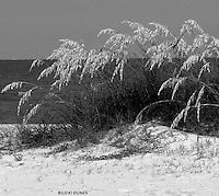 biloxi dunes,sand,water,gulf