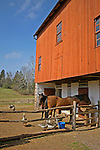 Berks Co. Daniel Boone Homestead, Berks Co., PA