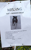 Sign offering a reward for a missing pet dog.