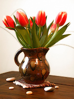 Red orange tulips in a cermic vase on table top with stones around it