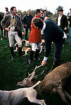 'QUANTOCK STAG HOUNDS', QUANTOCK, SOUTH SOMERSET. A HORN IS SOUNDED OVER THE DEAD STAG BEFORE IT IS GUTTED, 1997