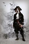 dog dressed up as captain,fantasy