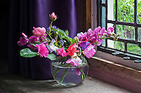On the living room windowsill a glass vase of pink sweet peas from the garden is set off by the deep violet curtain behind