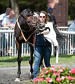 Belmont Park - Lonesome Glory - William Entenmann - 09/18/2014 - IN PROGRESS