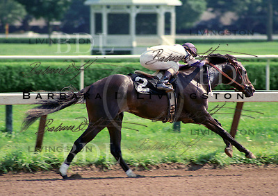 Cryptoclearance won or placed in 29 of 44 starts, was a multiple Grade I winner, and earned over $3.3 million.  Here shown breaking his maiden, at age two, in 1986 at Saratoga Race Course