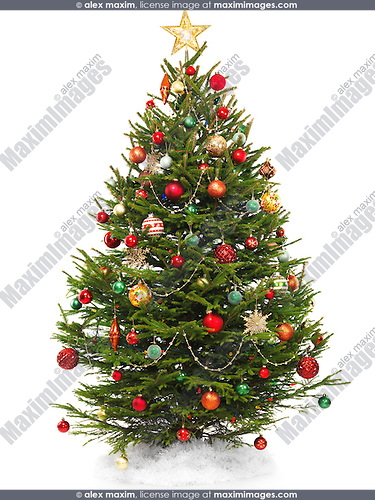 Beautiful decorated Christmas tree with a star topper isolated on white background.