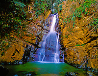 La Mina Falls  El Yungue Rainfarest, Puerto Rico  Caribbean National Forest  Only tropical rainfarest in the United States  National Forest system