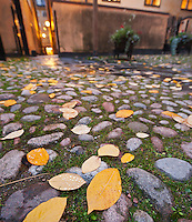 Autumn leaves fallen on cobble stone courtyard, Gamla Stan - old town, Stockholm, Sweden